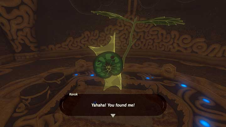 Korok - Introduction | Korok Seeds - Korok Seeds - The Legend of Zelda: Breath of the Wild Game Guide