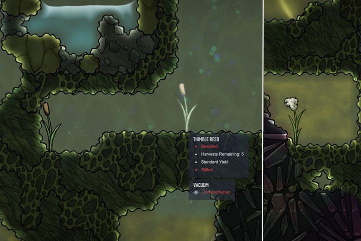 Thimble Reed - Unharvestable - Plants - Oxygen Not Included Game Guide